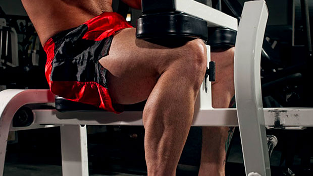 the-cure-for-chicken-calves